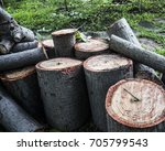 timber log forest industry wood ... | Shutterstock . vector #705799543