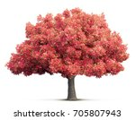 cherry blossom tree isolated 3d ... | Shutterstock . vector #705807943