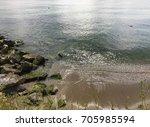 mossy sea | Shutterstock . vector #705985594