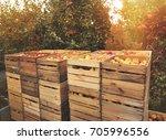 Organic Fresh Apples In A...