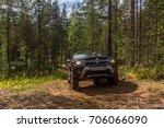 20.08.2017. leningrad region.... | Shutterstock . vector #706066090