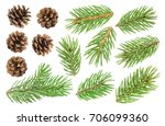 Fir Tree Branch And Pine Cones...
