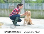 animal shelter volunteer... | Shutterstock . vector #706110760