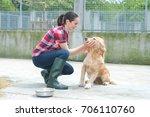 animal shelter volunteer... | Shutterstock . vector #706110760