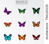 realistic monarch  callicore... | Shutterstock .eps vector #706120120