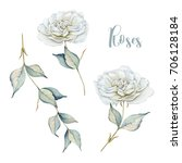 Stock photo hand drawn watercolor set with delicate white roses and branch 706128184