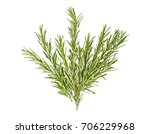 branches of rosemary on a white ... | Shutterstock . vector #706229968