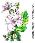 Violet Flower Blossom In Leave...