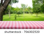 red checkered tablecloth... | Shutterstock . vector #706302520