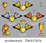 water polo ball with wings cups ... | Shutterstock .eps vector #706317676