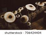 fresh champignon mushrooms ... | Shutterstock . vector #706424404