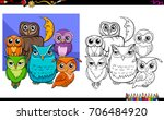 cartoon illustration of owls... | Shutterstock . vector #706484920