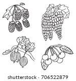 illustration on white... | Shutterstock .eps vector #706522879