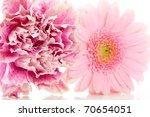 pink carnation and gerber... | Shutterstock . vector #70654051