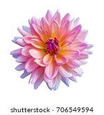 Beautiful Pink Dahlia Dahlia....