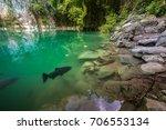 amazing emerald pool in lampang ... | Shutterstock . vector #706553134