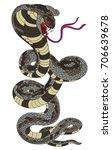 snake cobra tattoo style cobra... | Shutterstock .eps vector #706639678