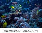 underwater background.... | Shutterstock . vector #706667074