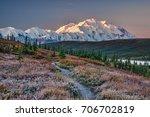 alaska's mount denali looms... | Shutterstock . vector #706702819