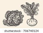 vegetables drawn in ink on a... | Shutterstock .eps vector #706740124