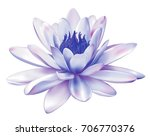 beautiful light purple lily... | Shutterstock .eps vector #706770376