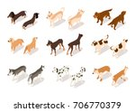 vector set of dog isometric...   Shutterstock .eps vector #706770379