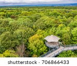 primeval beech forests of... | Shutterstock . vector #706866433