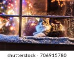 on christmas night a lovely cat ... | Shutterstock . vector #706915780