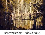 autumn landscape. the lake in... | Shutterstock . vector #706957084