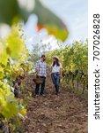 loving couple harvesting red... | Shutterstock . vector #707026828