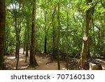 cu chi tunnels  ho chi minh...   Shutterstock . vector #707160130