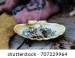 horizontal photo of burning...   Shutterstock . vector #707229964