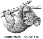 black and white engrave...   Shutterstock . vector #707234548
