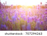 the sun at sunset shines...   Shutterstock . vector #707294263