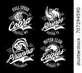 vintage furious cobra  eagle ... | Shutterstock .eps vector #707294590