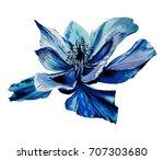 Watercolor Wild Field Flower...