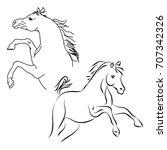 stallions contour on white... | Shutterstock .eps vector #707342326