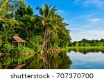 coconut trees and shade... | Shutterstock . vector #707370700
