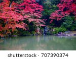 sento imperial palace is japan...   Shutterstock . vector #707390374