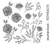 line flower   vector... | Shutterstock .eps vector #707453173