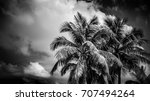 black and white image of two... | Shutterstock . vector #707494264