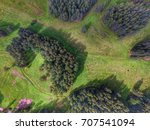 top view of parks in st.... | Shutterstock . vector #707541094