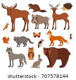 set of forest animals made in...   Shutterstock . vector #707578144