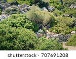 black mountain goat walking on... | Shutterstock . vector #707691208