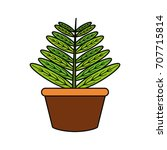 plant in a pot icon    Shutterstock .eps vector #707715814