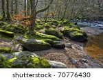 Photo Of River Roe Bank And...