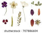 Stock photo dried flowers and herbarium isolated on a white background 707886604