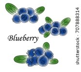 blueberry sketch color pattern  ... | Shutterstock .eps vector #707888314