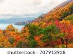 beautiful orange and red autumn ... | Shutterstock . vector #707913928