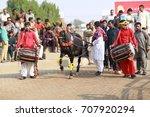Cattle Market   Lahore  ...